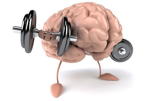 A Importância dos Exercícios Físicos na Saúde Cerebral